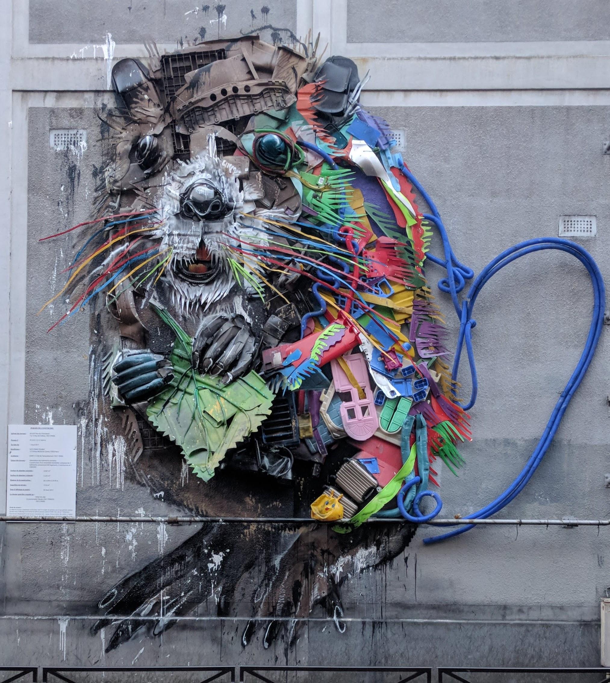 STS et street art