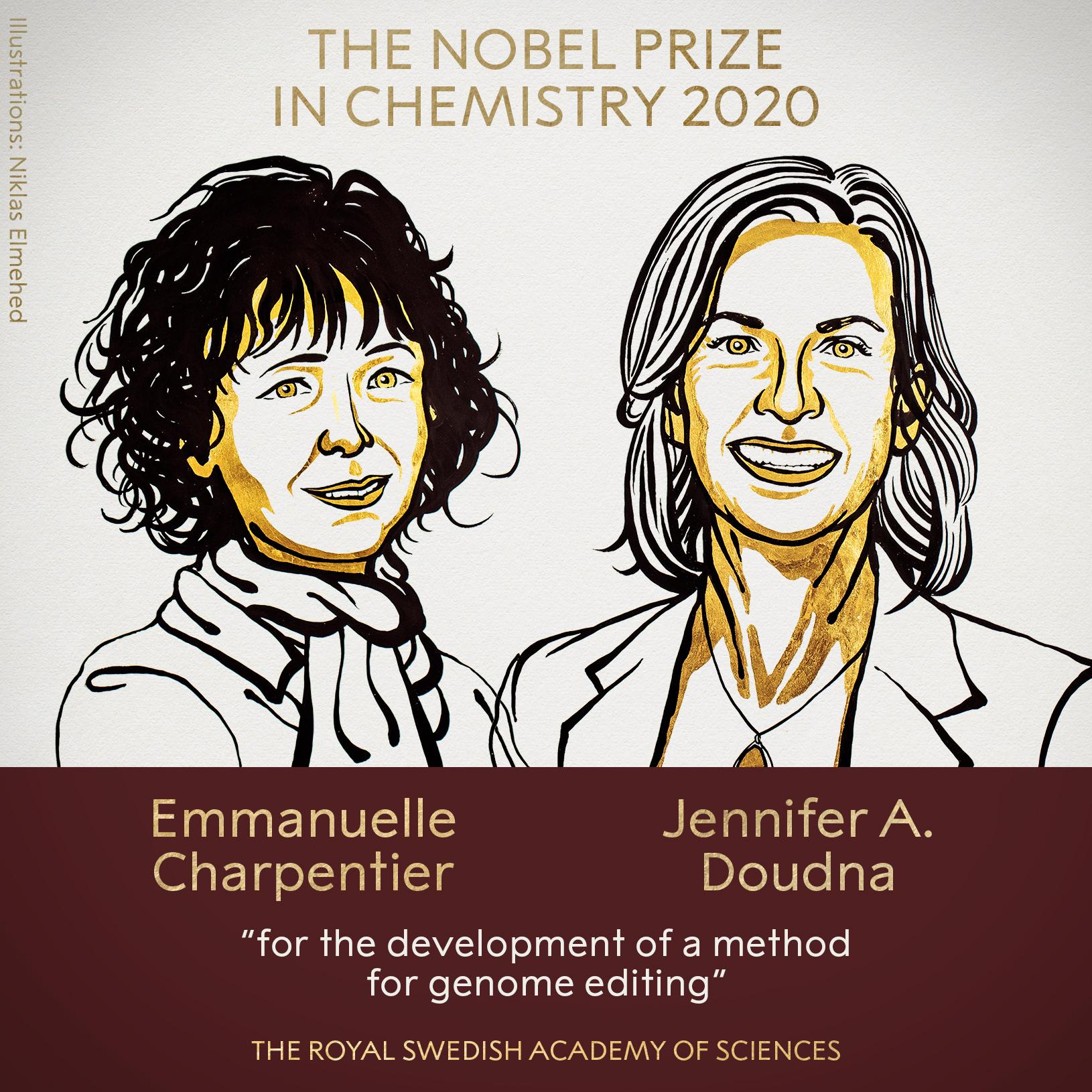 La nouvelle technique d'édition du génome CRISPR-Cas9 : entre promesses économico-scientifiques et questionnements éthiques